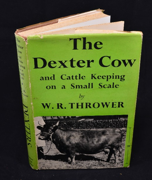 Rare The Dexter Cow  W.R Thrower 1954