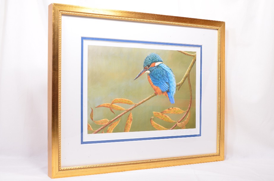 Kingfisher on Willow - Limited Edition Framed Print by Robert E Fuller 4